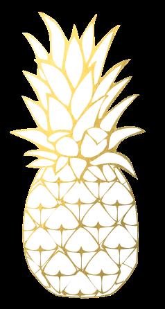 Výsledek obrázku pro gold pineapple png